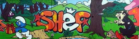 lyonbombing-graffiti-tag-graffe