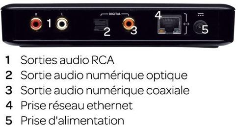 squeezebox-connectique-audio