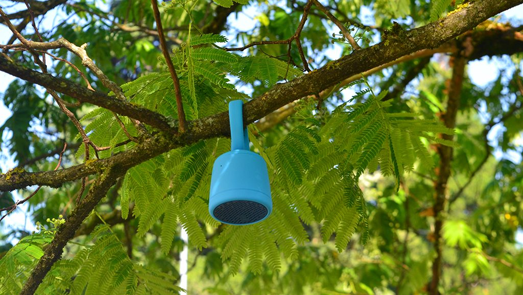 Test de l'enceinte Bluetooth Waterproof Polk Boom Swimmer Duo dans la forêt