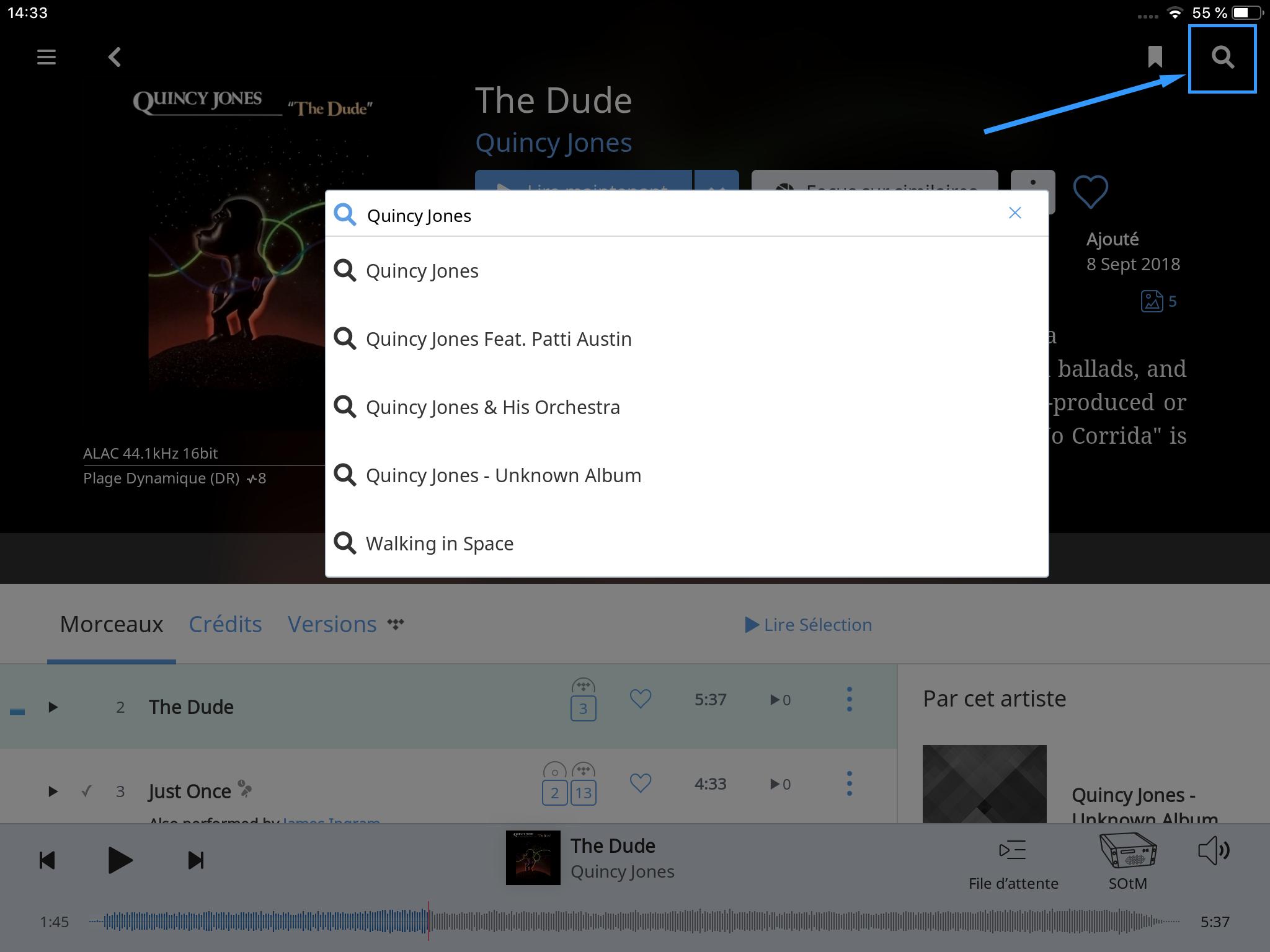 Recherche parmi toutes mes sources musicales: fichiers et services de musique en ligne