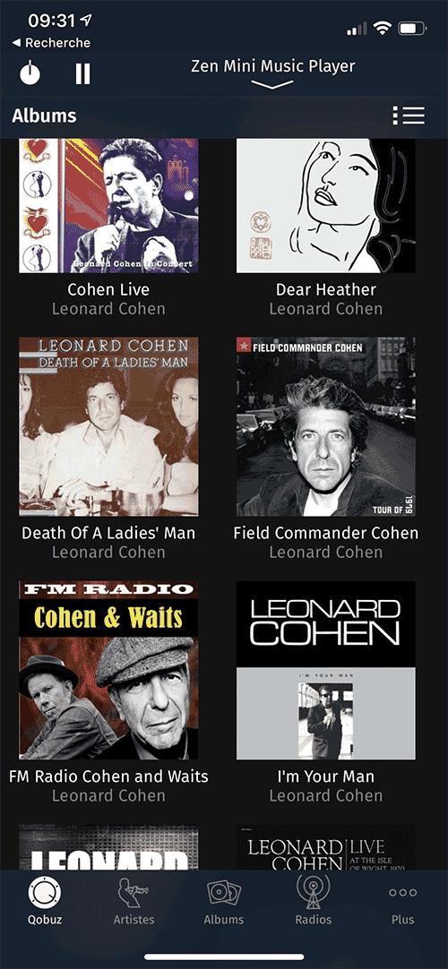 La présentation des albums est identique à la bibliothèque musicale stockée sur le serveur.