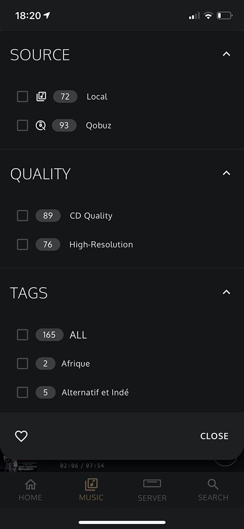 Les différents filtres pour la bibliothèque musicale : fichiers, services de streaming, qualité sonore, etc.